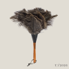 feather_duster_ostrich_small_