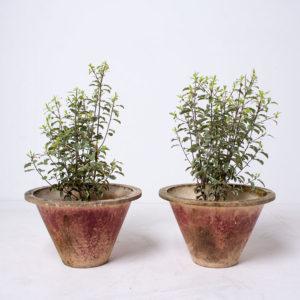 Pair Vintage Planters