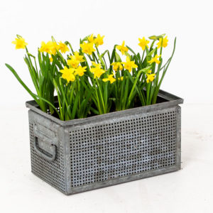 Vintage Galvanised Metal Planter